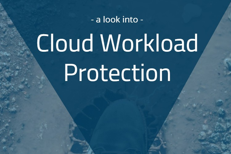 A Look into Cloud Workload Protection