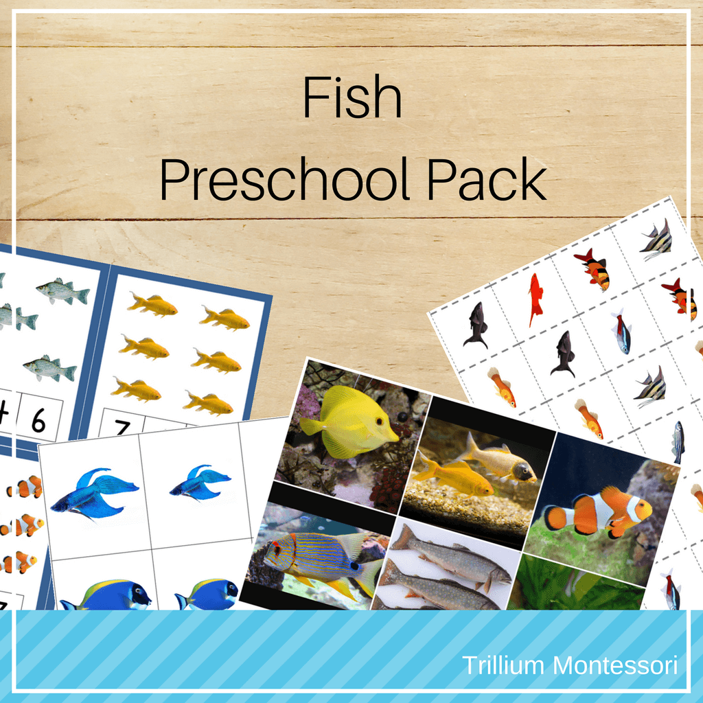 Montessori Resources For Learning About Fish
