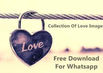 Free Download For Whatsapp