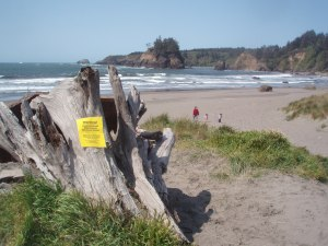 Water Quality Posting at Beach