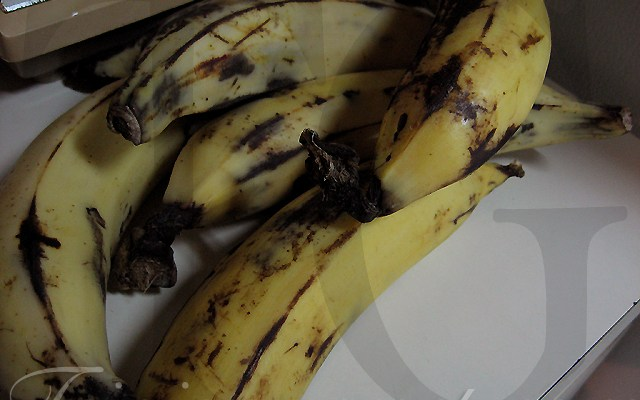 That Big Fat Banana Is A Plantain! (recipes)  – Caribbean Beachcomber July/August 1969