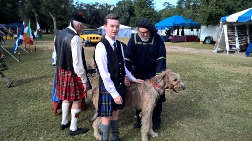 Two Irish Wolfhounds, only 20 months old!