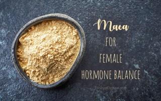 Maca for female hormone health