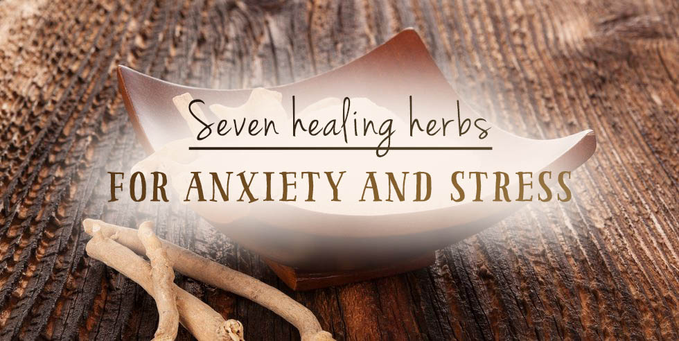 Seven Healing Herbs for Anxiety & Stress (and anxiety in a nutshell)