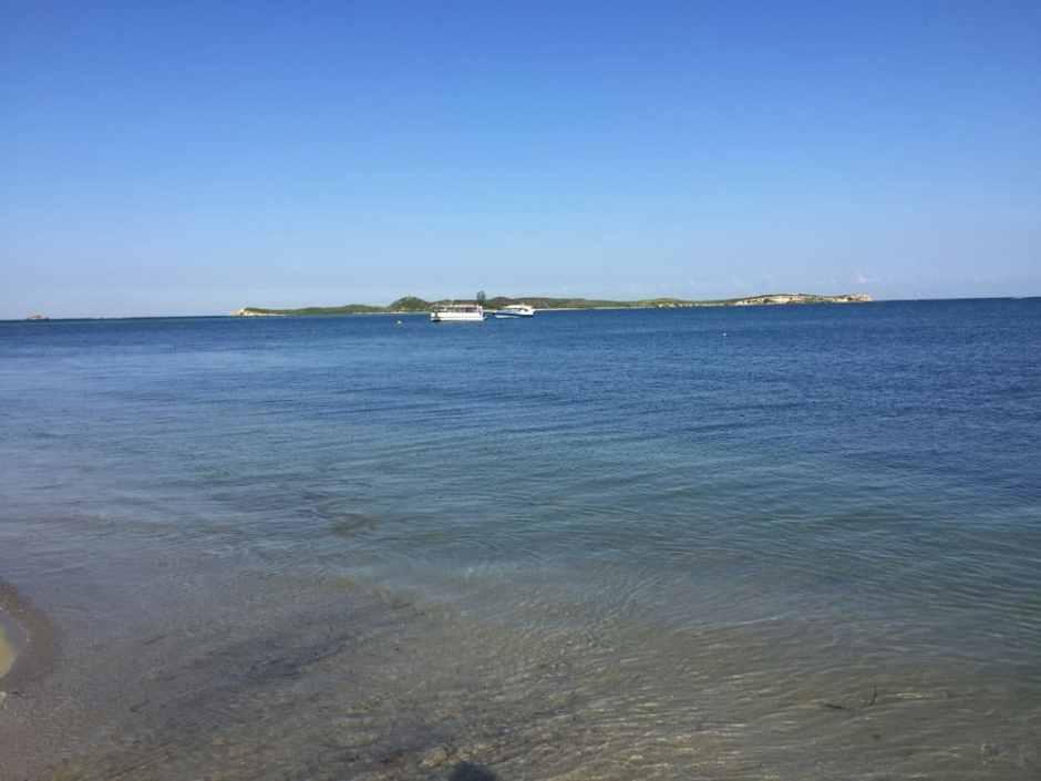 beach-before-penguin-island-3
