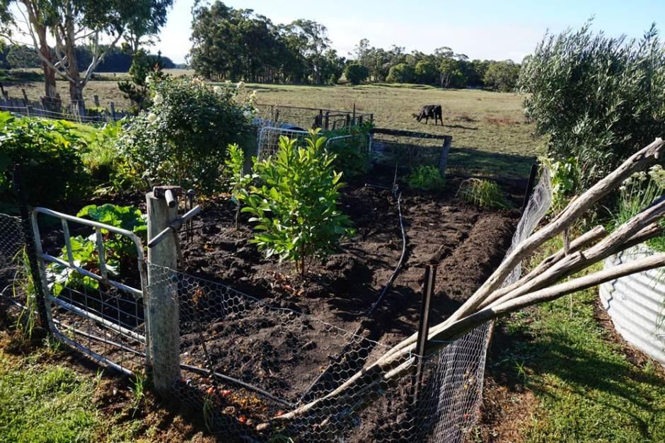 Le jardin tout propre et prêt pour l'hiver