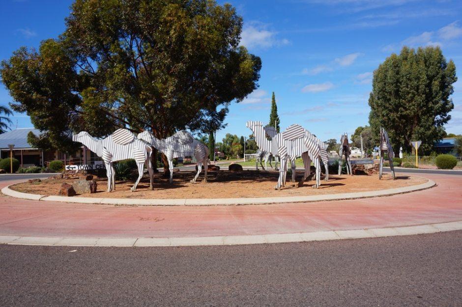 tin-camels-norseman