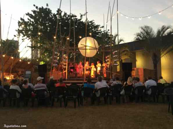 darwin-festival