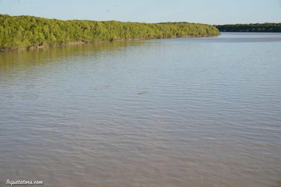 south-alligator-river