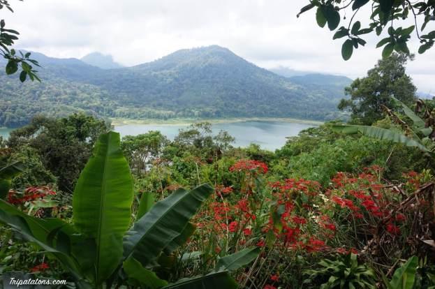 tamblingan-lake-1