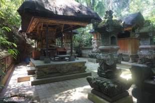ubud-monkey-forest-1