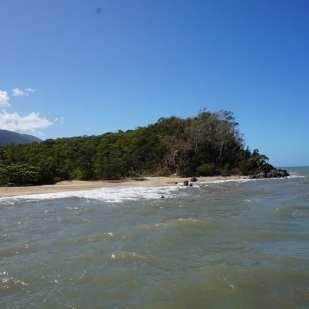 Palm Cove