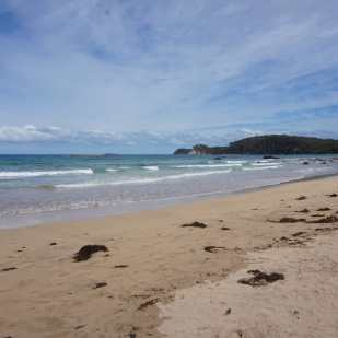 Denhams beach