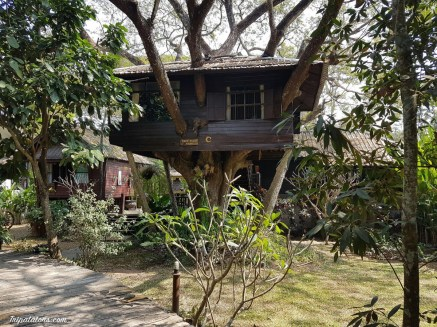 chiang-mai-airbnb-2