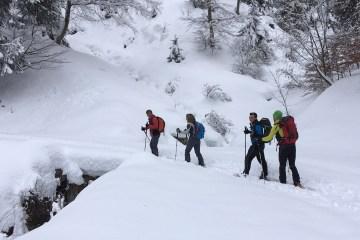 quattro uomini sulla neve esplorazione alpina