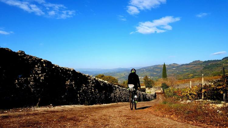 uomo in bici gravel lungo sentiero di campagna in veneto