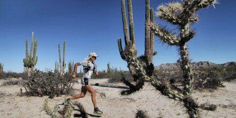 Marathon des Sables 2017 Marco Olmo