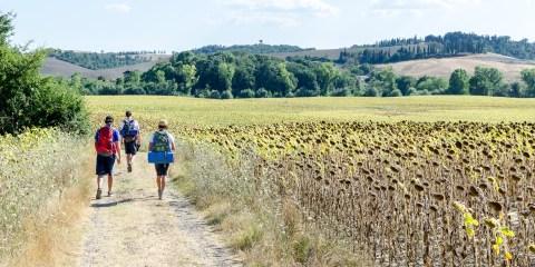 I cammini più belli d'Italia - Via Francigena
