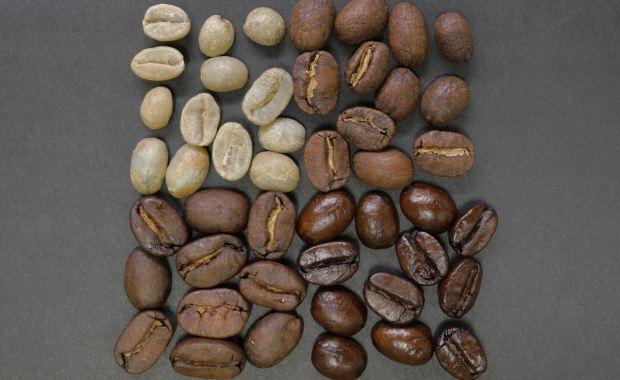 Various Roast Shades