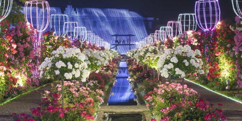 日本旅遊|如夢似幻的長崎豪斯登堡玫瑰花園,最新日本景點不能錯過!