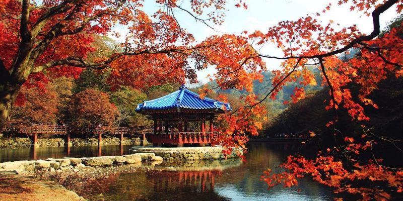 2019韓國紅葉|內藏山 漢拿山 伽耶山等8大山岳楓葉推薦+賞楓預測出爐