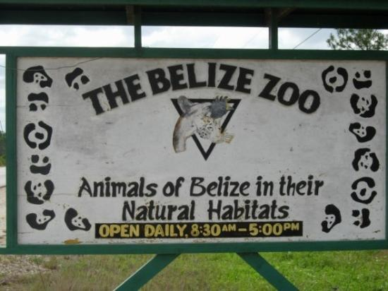 Reasons To Visit Belize