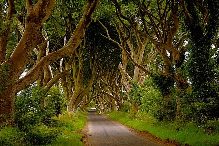 Bregagh Road, Ballymoney, Ireland