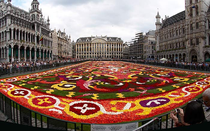 Brussels Floral Carpet, Brussels, Belgium