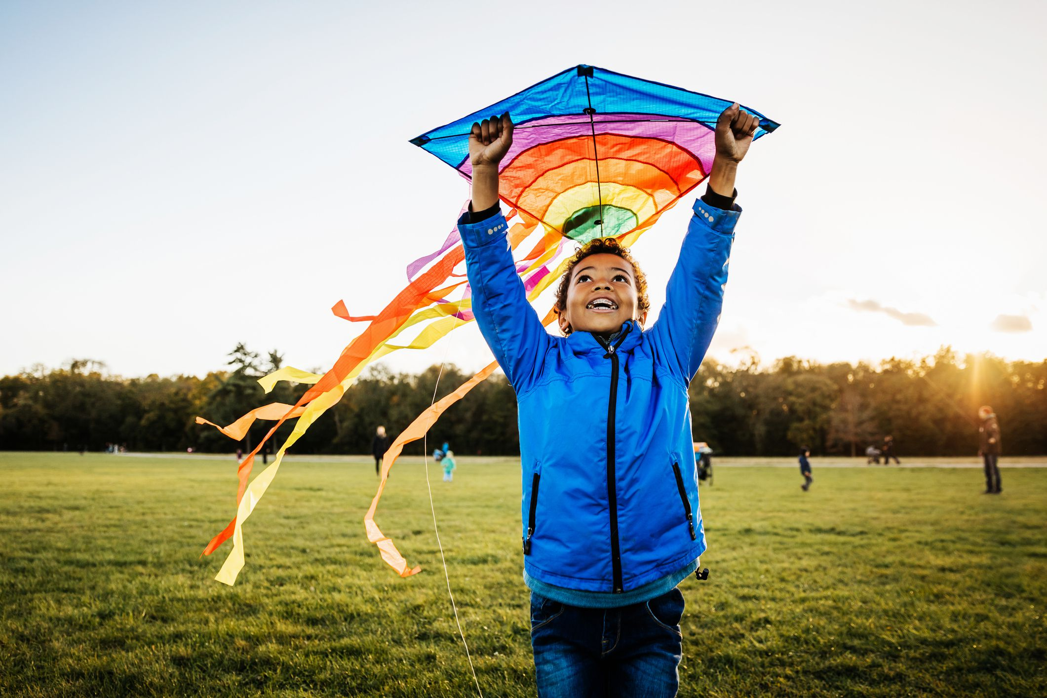 The 7 Best Kites For Windy Days In