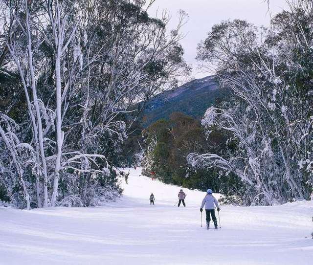 Ski Trail Down To Friday Flat Thredbo New South Wales