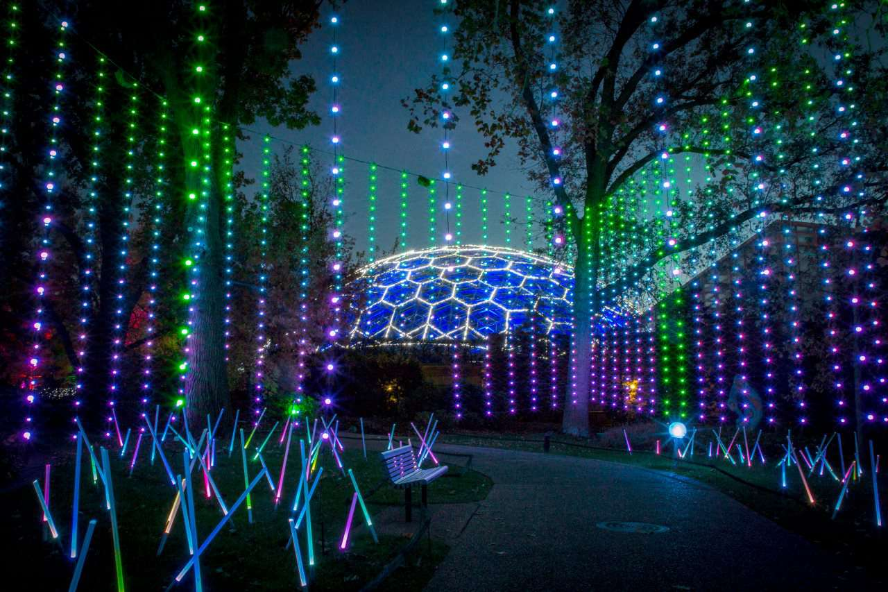 Zoo Wild Lights St Louis
