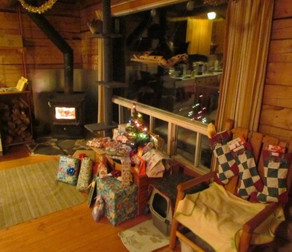 We brought all our gifts and a small tree, hung our stockings and decorated the cabin with some garlands and Christmas cards. It was so beautiful!