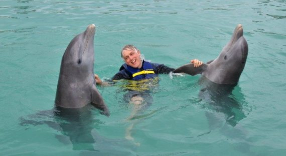 I got a chance to learn some dance moves from my dolphin friends! They know how to move it!!