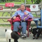 Mama D and The Goats at Beacon Hill Petting Zoo