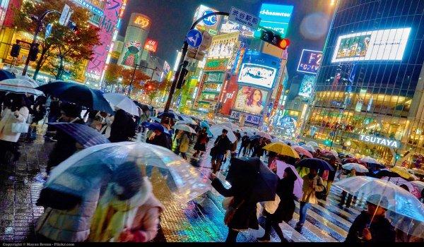 Sadepäivänkin Tokio on värejä täynnä. Kuva: Moyan Brenn