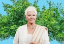 Dame Judi Dench will not stand by and let you kill her favourite tree
