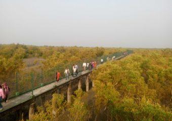 Sundarban watchtower
