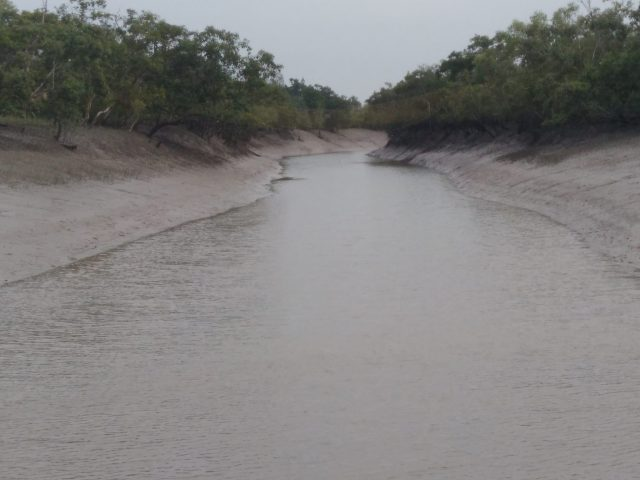 SUNDARBAN NARROW CREEK
