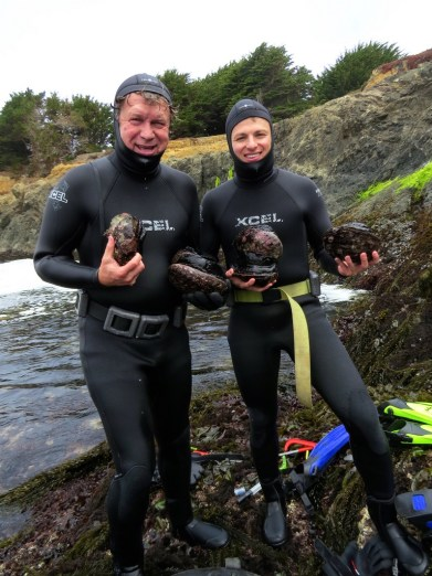 Abalone harvest in the years best pictures