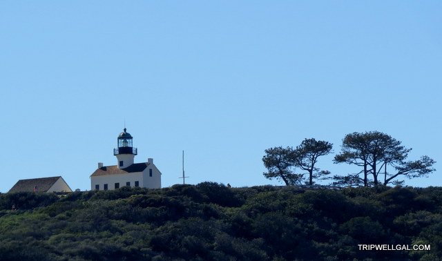 Cabrillo National Monument from sea level on a San Diego Whale Watching cuise
