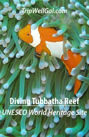 UNESCO World Heritage Site pin