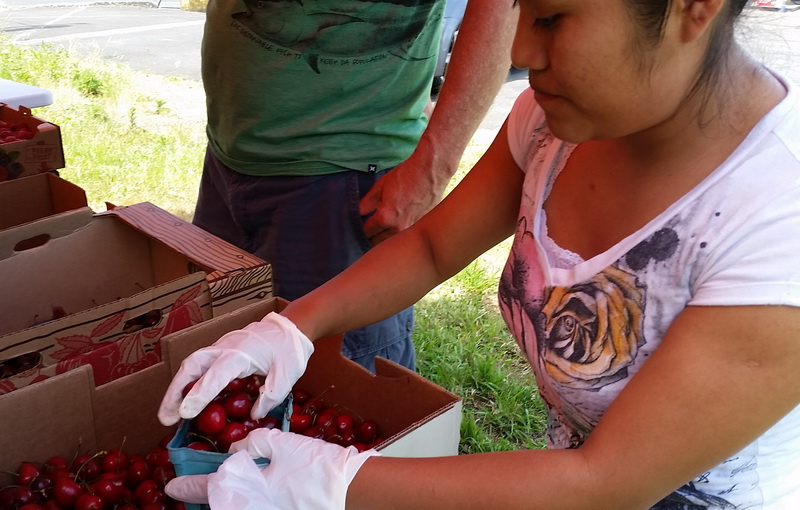 Road stand cherries are delicious snack ideas