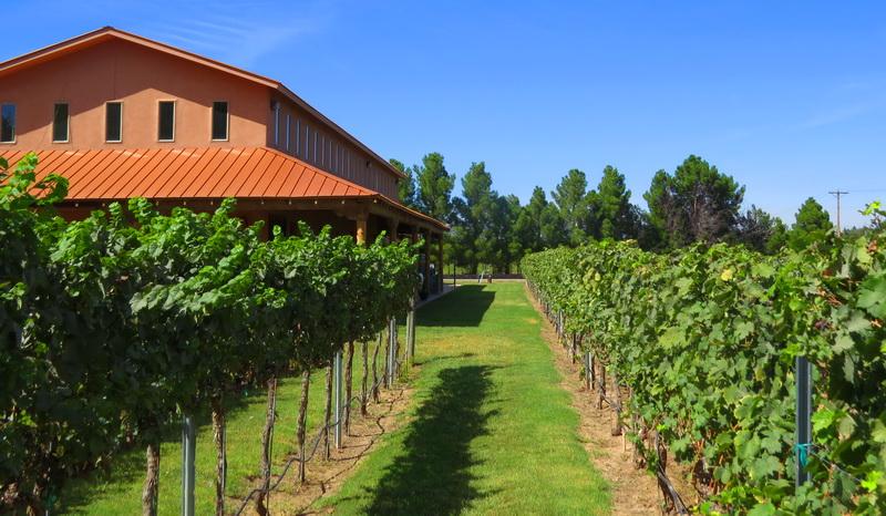 Vin Valle Vineyards in El Paso, Texas
