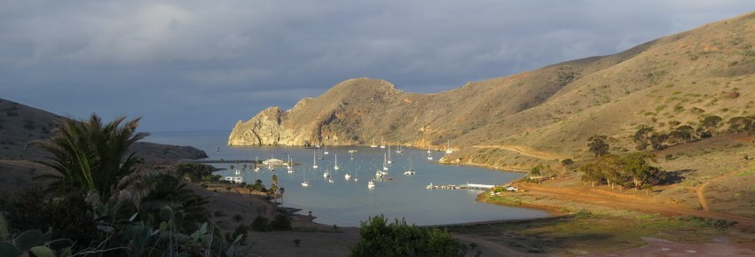 Catalina Harbor view from Banning House