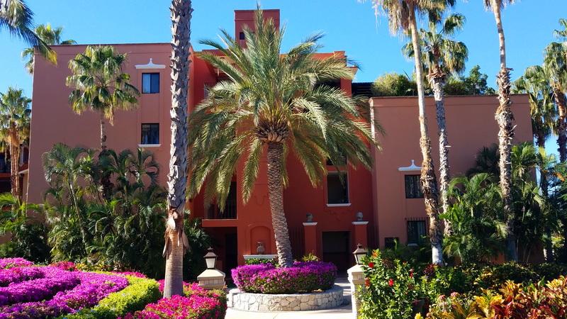 One comfy condo in Cabo
