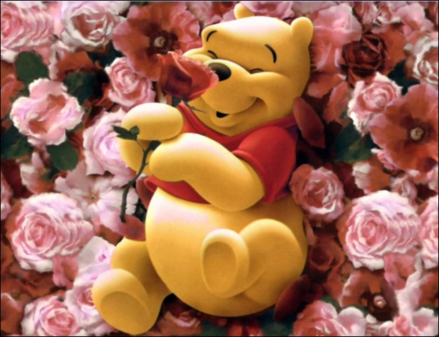 Pooh on roses
