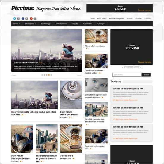 Piccione - Responsive News/Magazine Theme
