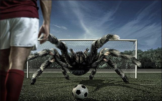 06-spider