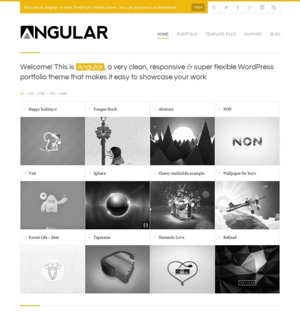 angular-responsive-wordpress-theme.jpg