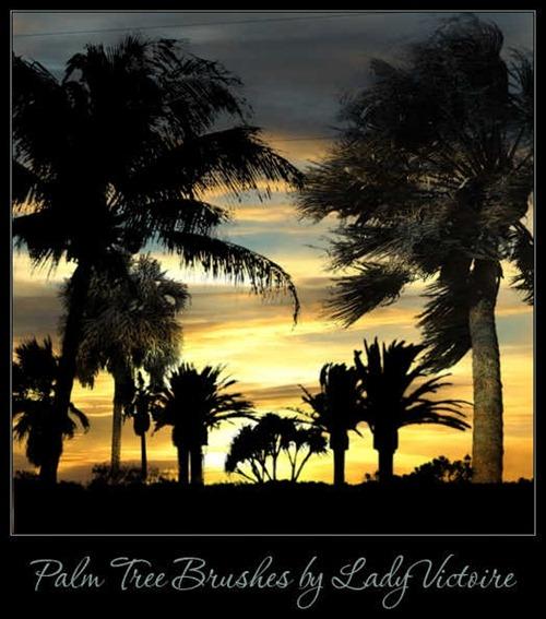 palm-tree-brushes[3]
